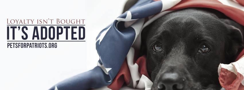 pets for patriots 1